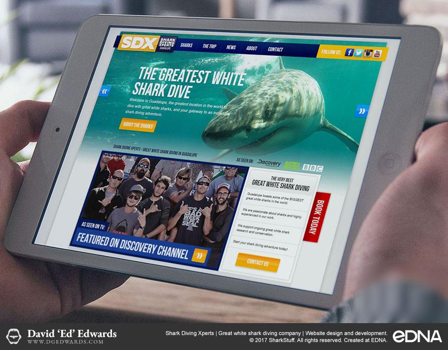 Shark Diving Xperts website