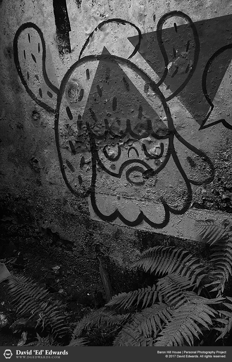Graffiti on the wall of an abandoned house