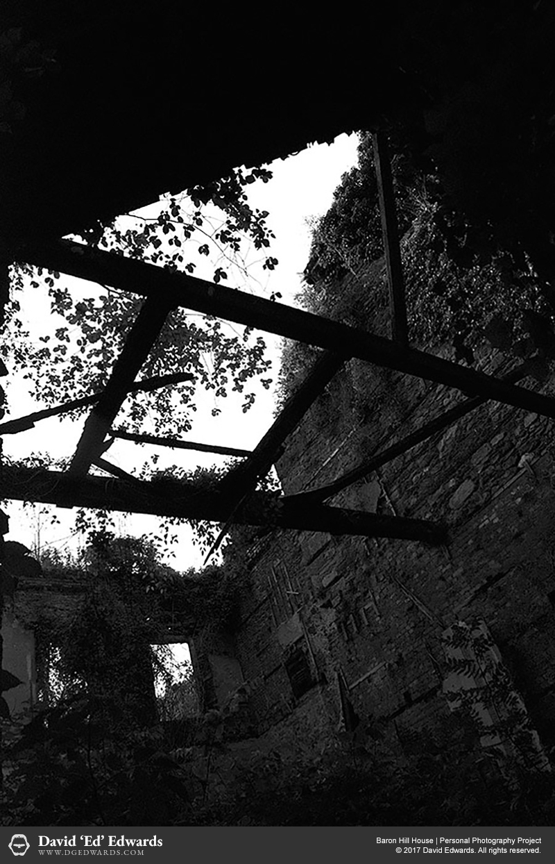 Exposed interior walls of an abandoned building