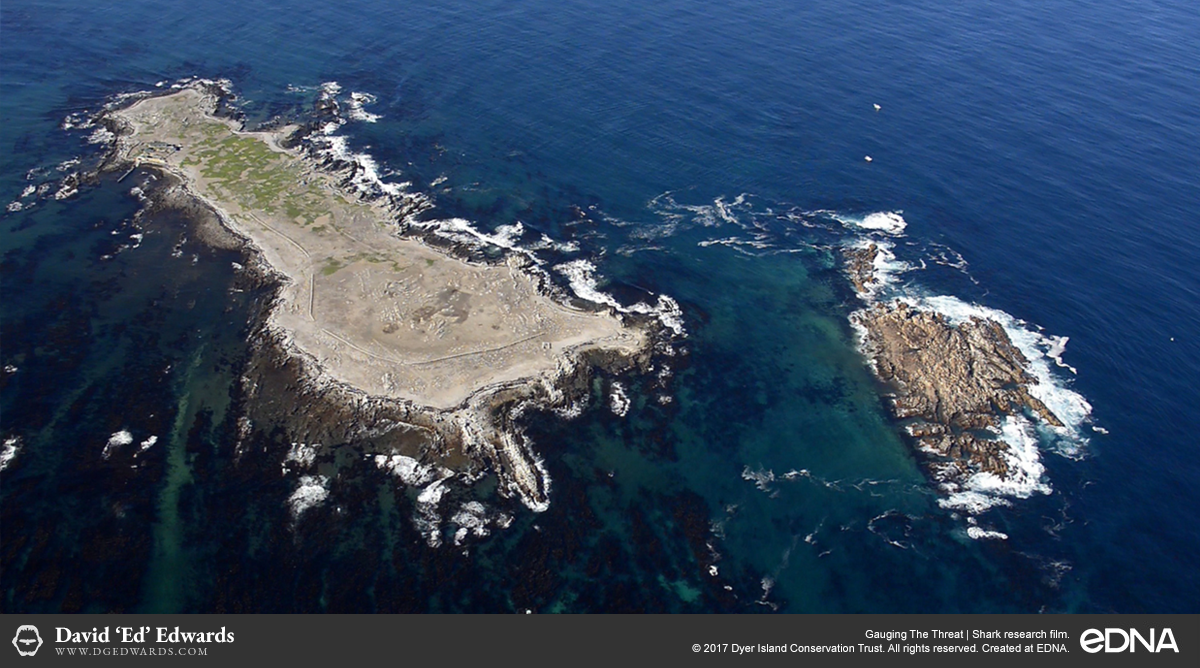 Aerial shot of Dyer Island in Gansbaai, South Africa